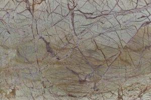forest gren
